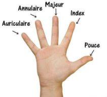 Nom du doigt